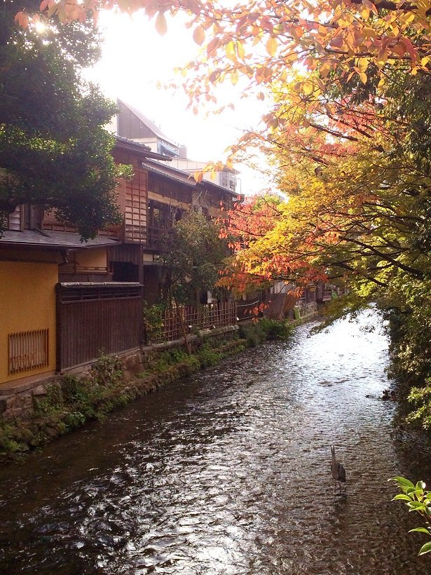 Kyoto-Gion for Geisha Houses