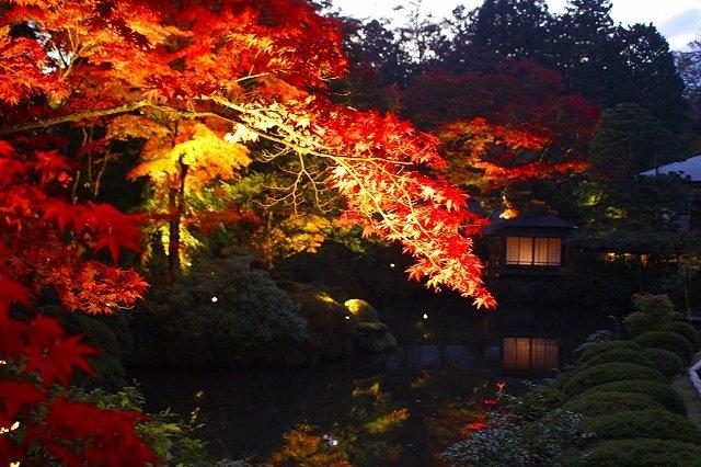 Shoyo-garden-Rinouji