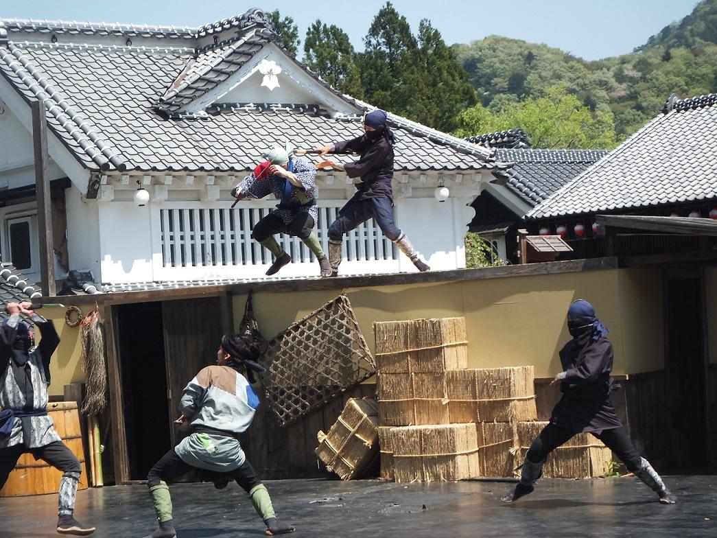 nikko-edomura-v-2-29-12-17