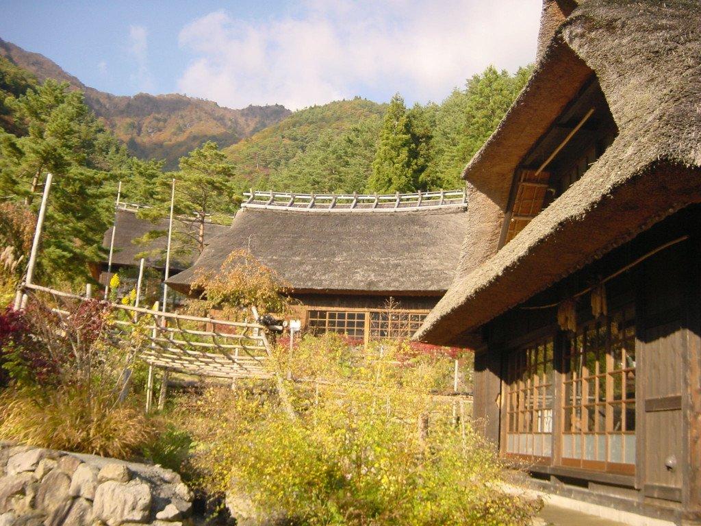 FUJI-Mt  Iyashi no mori